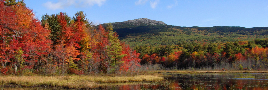 newhampshire920x310
